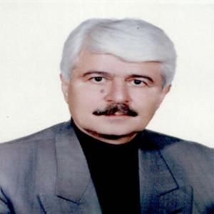 محمد حیدری تبریزی